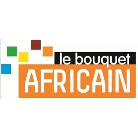 O buquê Africano, 6 mês de assinatura tv sem canal de antena de satélite