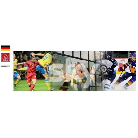 Sky Deutschland S port + Futball bundesliga avec module