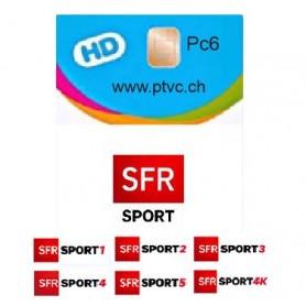 Cartão para o esporte de Sfr