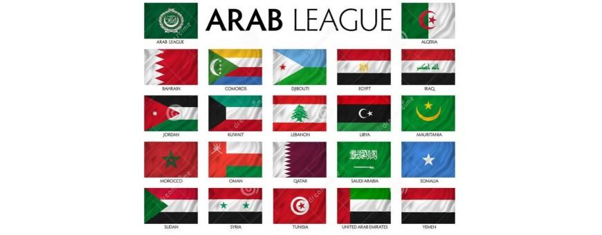 Àrab, Aràbia TV