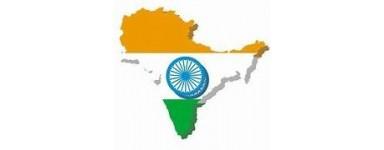 TV Indiana, Hindi