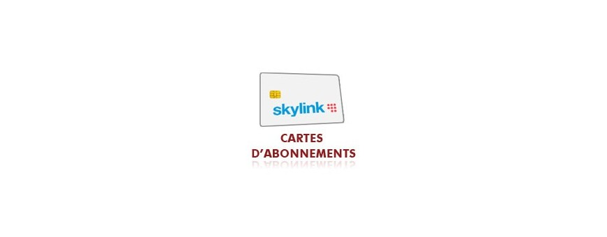 Abonnement Skylink Multi 12 mois