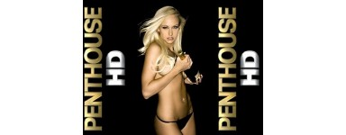 Penthouse HD, TBS HQ