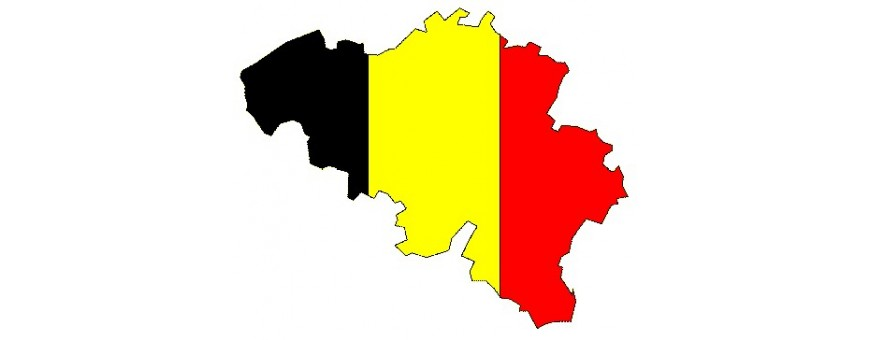Belgien, Belgien TV