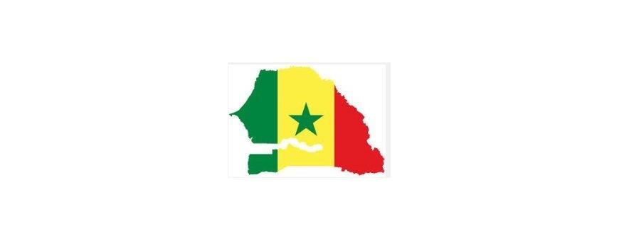 Tv Senegalaise, Senegal
