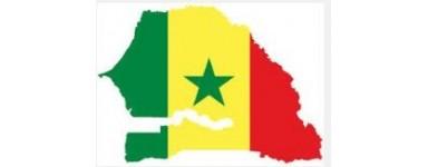 TV сенегалец, Сенегал