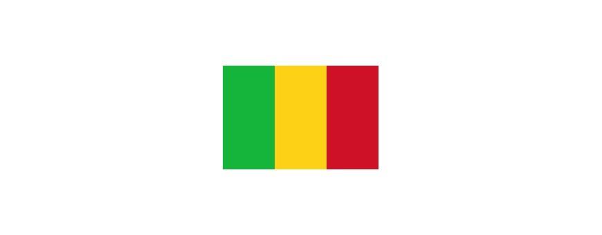 Телевидение Мали, Мали