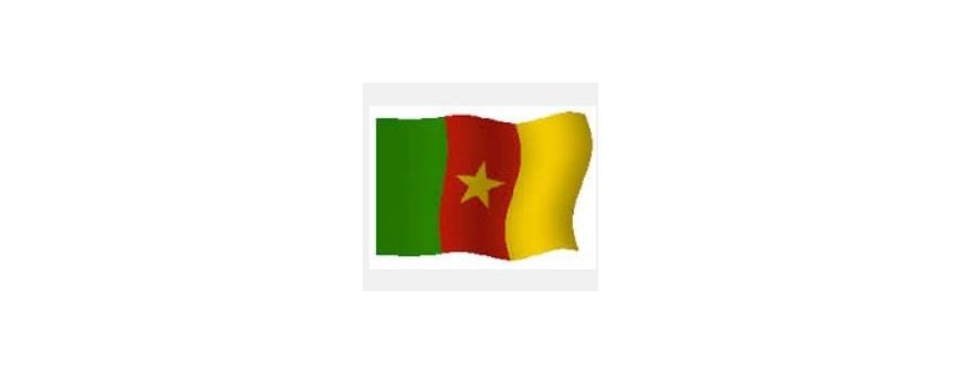 TV Camerún - Camerún