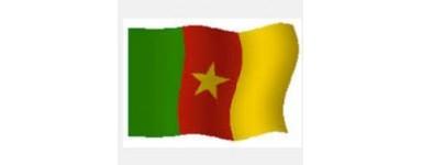 TV camarões - República dos Camarões