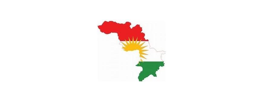 Курдского ТВ
