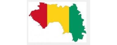 Tv Guinéens - Guinée
