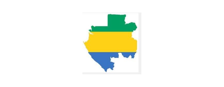 TV Габон - Габон