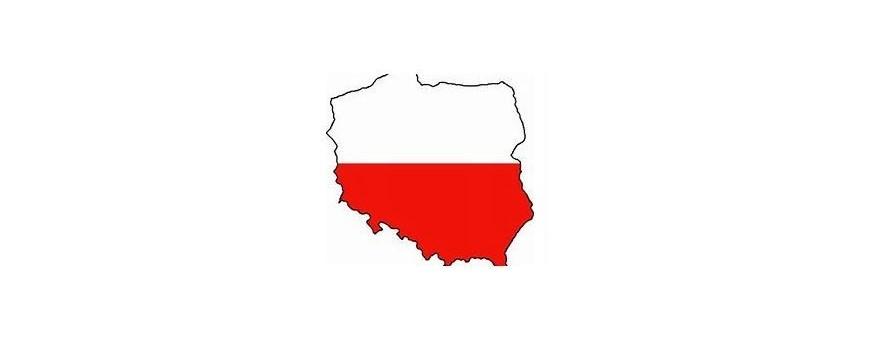 TV polonesa