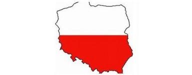 Польское телевидение