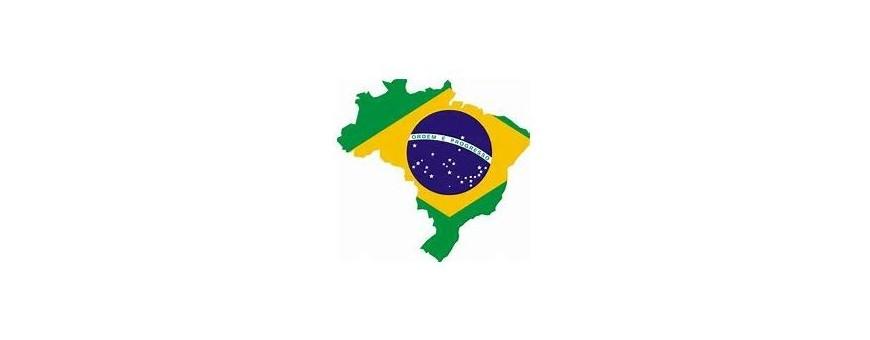 Brasiliano, Brasile TV