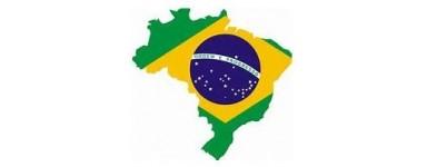 Brazilian, Brasil TV