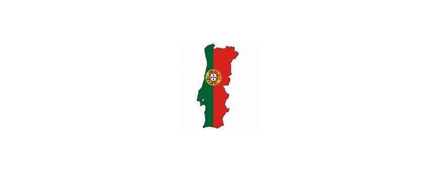 Portuguese, Portugal TV