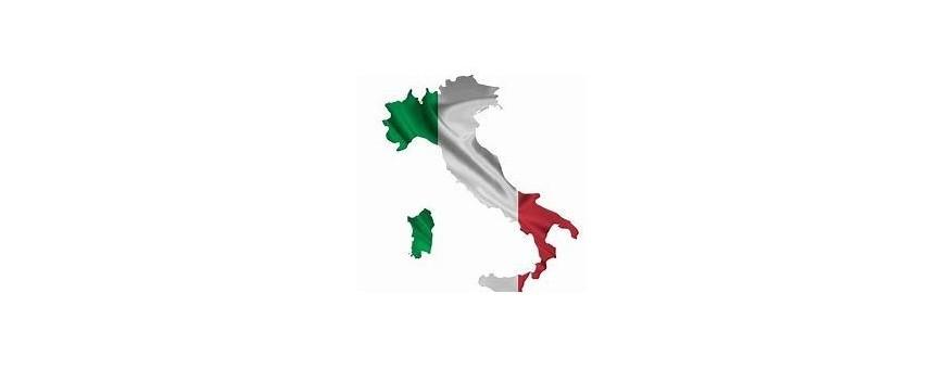 TV italiana, Italia