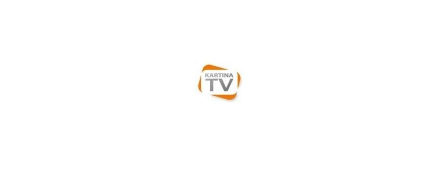 Kartina IP-TV über das internet